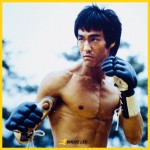 Боксови ръкавици - Bruce Lee Signature Grappling Gloves