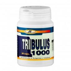 Трибулус террестрис - Tribulus 1000, 60 капс, JK Nutrition