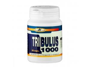 Бабини зъби 60 капс  Tribulus 1000 JK Nutrition