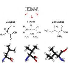 Аминокиселини с разклонена верига - BCAA