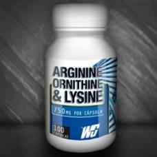 Аргинин Орнитин и Лизин, 100 капс, Wingold